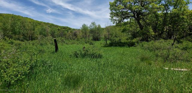 TBD Mountain Springs Ranch, Glenwood Springs, CO 81601 (MLS #160116) :: Roaring Fork Valley Homes