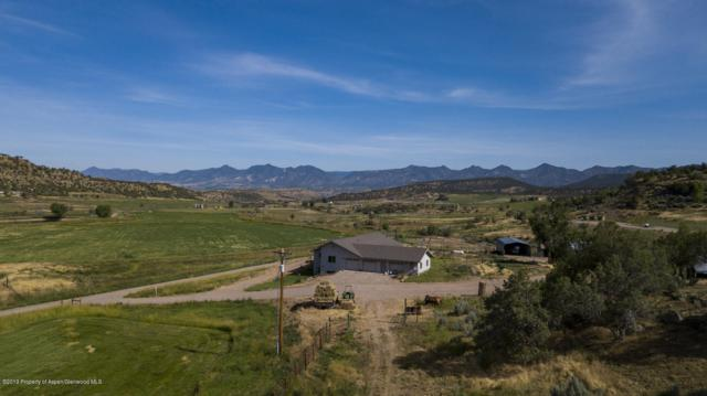 5890 County Road 311, New Castle, CO 81647 (MLS #160591) :: Roaring Fork Valley Homes