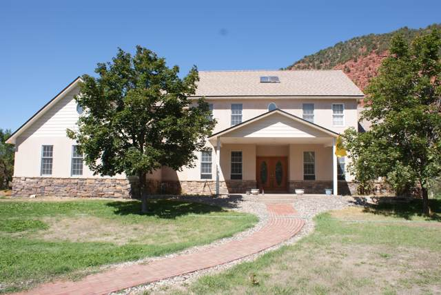 224 River Ridge Drive, Glenwood Springs, CO 81601 (MLS #161328) :: McKinley Real Estate Sales, Inc.