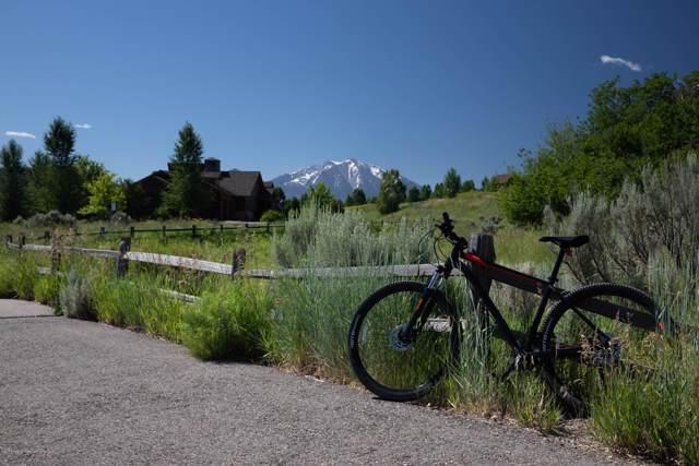 0399 Blue Heron Drive, Glenwood Springs, CO 81601 (MLS #161644) :: McKinley Real Estate Sales, Inc.