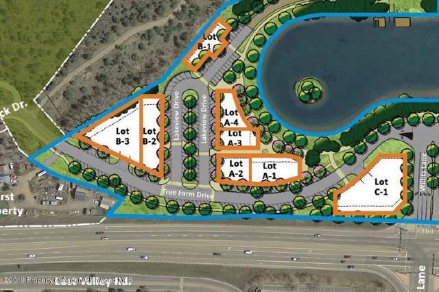401 Tree Farm Drive A3, Carbondale, CO 81623 (MLS #162214) :: McKinley Real Estate Sales, Inc.