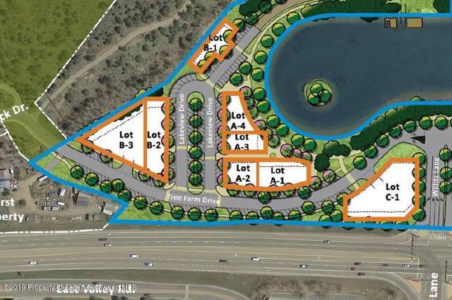 401 Tree Farm Drive A4, Carbondale, CO 81623 (MLS #162215) :: McKinley Real Estate Sales, Inc.