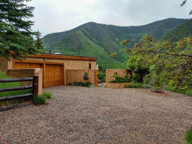 2 Castle Lane, Basalt, CO 81621 (MLS #162249) :: McKinley Real Estate Sales, Inc.