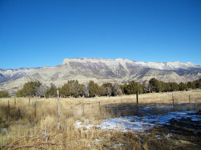 698 County Road 355, Parachute, CO 81635 (MLS #162465) :: Western Slope Real Estate