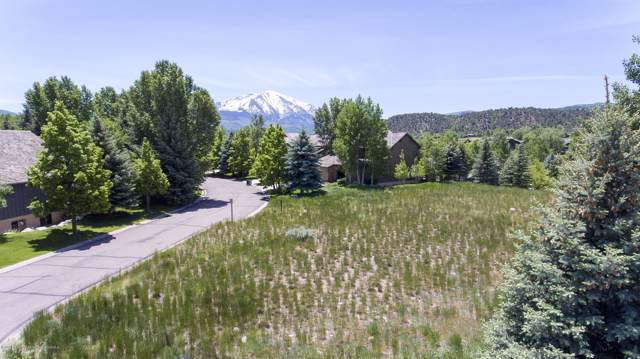 488 Settlement Lane, Carbondale, CO 81623 (MLS #162485) :: Western Slope Real Estate