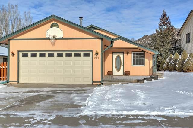 255 Buckthorn Road, New Castle, CO 81647 (MLS #162563) :: Western Slope Real Estate