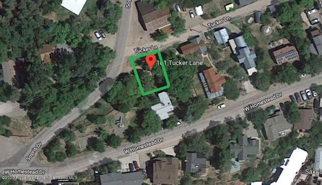 101 Tucker Lane, Basalt, CO 81621 (MLS #162728) :: Roaring Fork Valley Homes