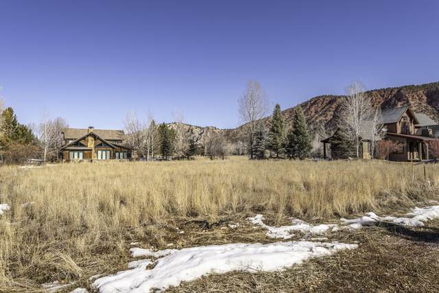 39 Buffalo Lane, Carbondale, CO 81623 (MLS #163432) :: Roaring Fork Valley Homes