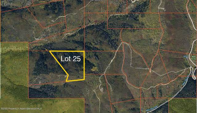 Lot 25 Tbd West Elk Creek Ranch, New Castle, CO 81647 (MLS #163457) :: Western Slope Real Estate