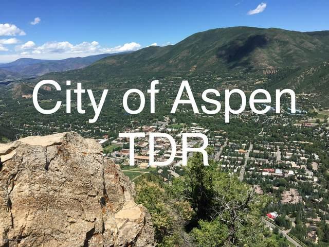 TDR Tdr, Aspen, CO 81611 (MLS #163495) :: McKinley Real Estate Sales, Inc.