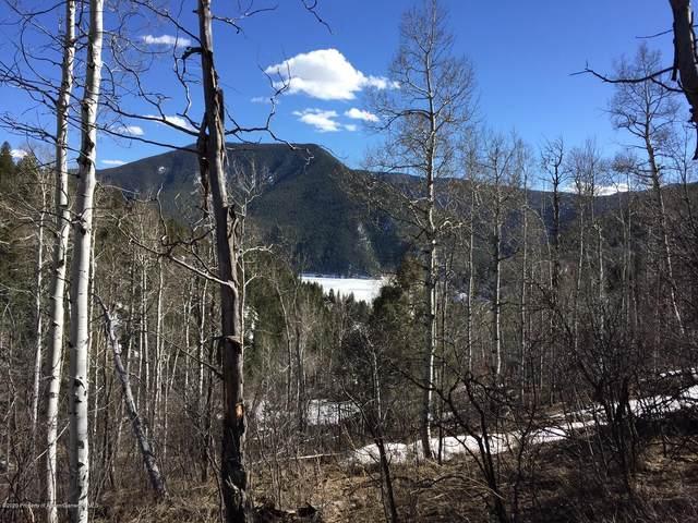 260 Wapiti Way, Basalt, CO 81621 (MLS #163669) :: Roaring Fork Valley Homes