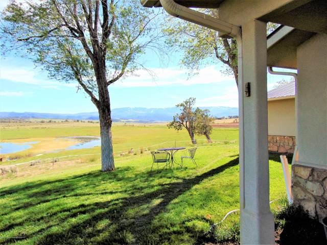 2094 Chipperfield Lane, Silt, CO 81652 (MLS #163919) :: Roaring Fork Valley Homes