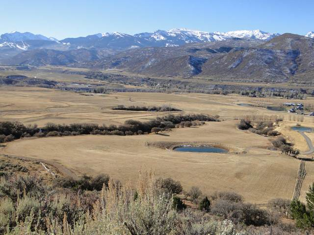 664 Chaparral Drive, Woody Creek, CO 81656 (MLS #163943) :: McKinley Real Estate Sales, Inc.