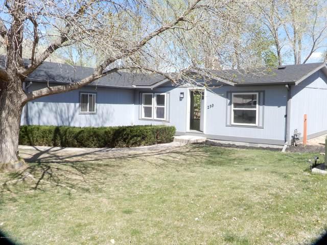250 E Tamarack Circle, Parachute, CO 81635 (MLS #164004) :: Western Slope Real Estate