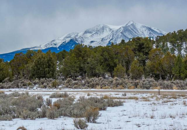 1181 Callicotte Ranch Lot 28, Carbondale, CO 81623 (MLS #164401) :: Roaring Fork Valley Homes