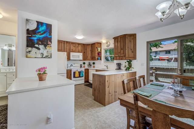 1021 Wheel Drive, Carbondale, CO 81623 (MLS #164466) :: Roaring Fork Valley Homes