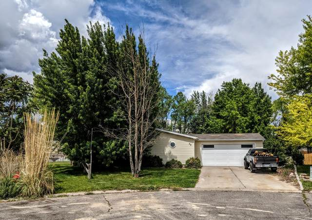 59 Goldfield Court, Parachute, CO 81635 (MLS #164467) :: Western Slope Real Estate
