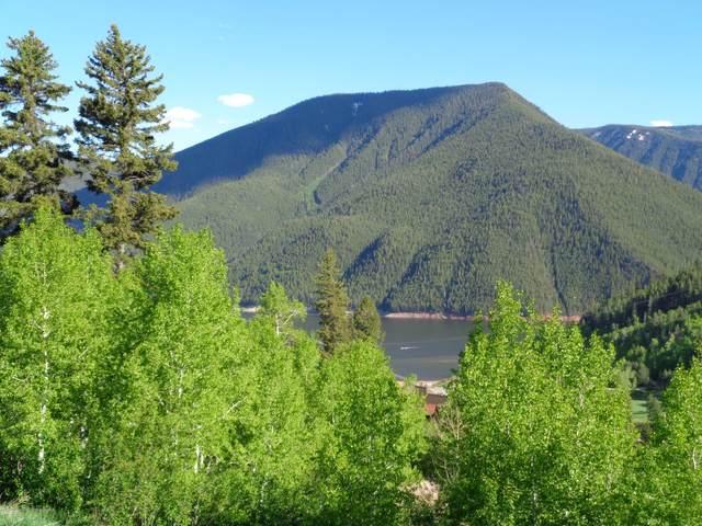 510 Mclaughlin Lane, Basalt, CO 81621 (MLS #164468) :: Roaring Fork Valley Homes