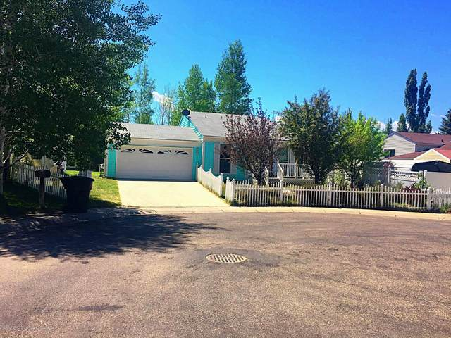 3846 Exmoor Place, Craig, CO 81625 (MLS #164537) :: Roaring Fork Valley Homes