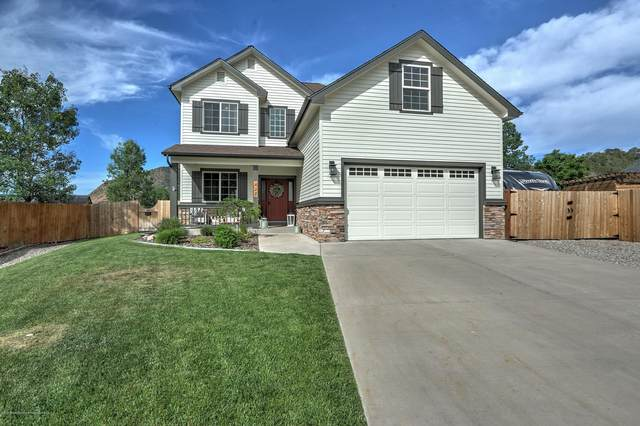 427 Hitching Post Lane, New Castle, CO 81647 (MLS #164558) :: Western Slope Real Estate