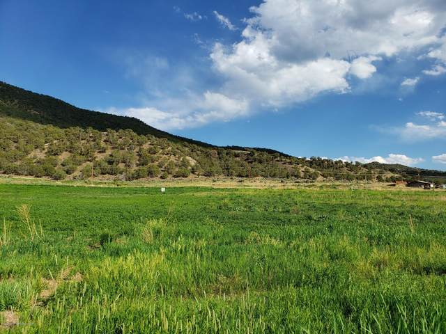Lot 4 Garden Circle, New Castle, CO 81647 (MLS #164565) :: Roaring Fork Valley Homes