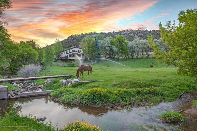 1164 County Road 113, Carbondale, CO 81623 (MLS #164587) :: Western Slope Real Estate