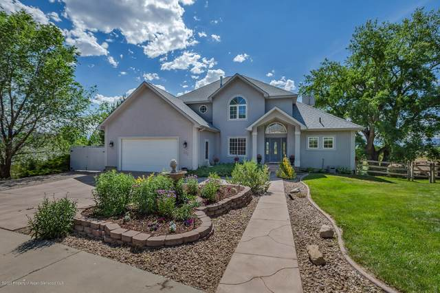481 Eagles Nest Drive, Silt, CO 81652 (MLS #164728) :: McKinley Real Estate Sales, Inc.