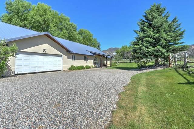 555 Groff Lane, Silt, CO 81652 (MLS #164933) :: McKinley Real Estate Sales, Inc.
