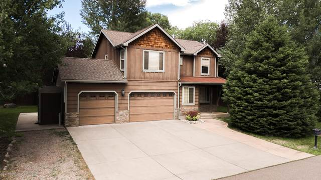 131 Ranch Creek Lane, Carbondale, CO 81623 (MLS #164951) :: Aspen Snowmass | Sotheby's International Realty