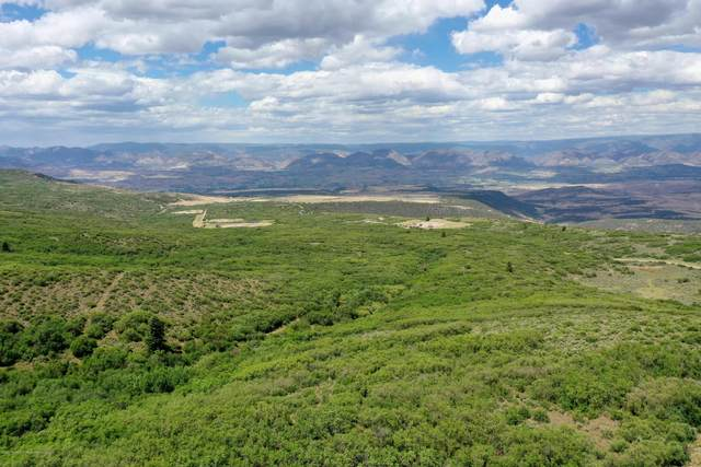 TBD Grass Mesa Road, Rifle, CO 81650 (MLS #165137) :: Western Slope Real Estate