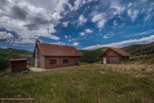 22521 Divide Creek Road, Silt, CO 81652 (MLS #165368) :: Western Slope Real Estate