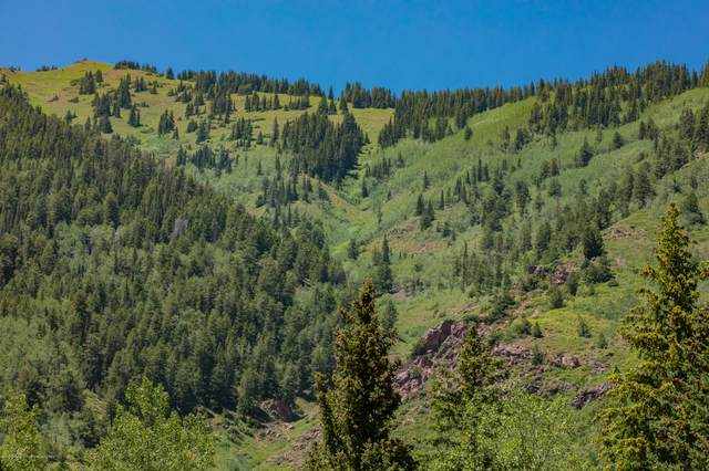 TBD Winding Way Road, Aspen, CO 81611 (MLS #165396) :: Roaring Fork Valley Homes