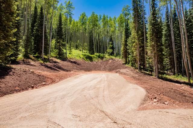 TBD Winding Way Road, Aspen, CO 81611 (MLS #165397) :: Aspen Snowmass | Sotheby's International Realty
