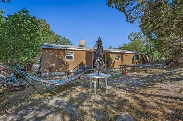 232 Comanchero Trail, New Castle, CO 81647 (MLS #165404) :: Western Slope Real Estate