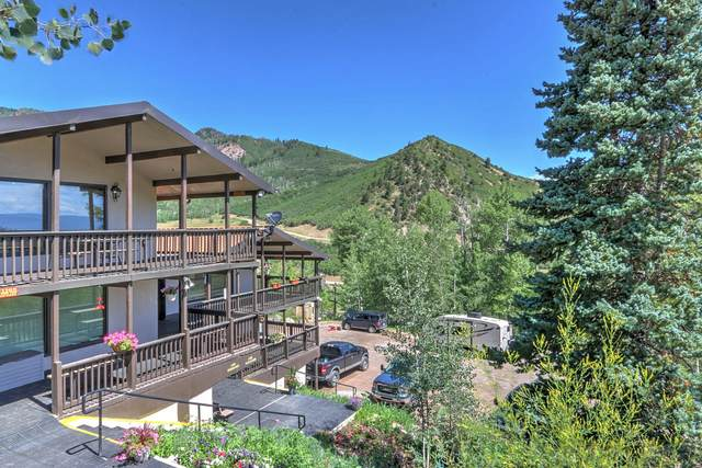 11101 County Road 117 5A, Glenwood Springs, CO 81601 (MLS #165674) :: Western Slope Real Estate