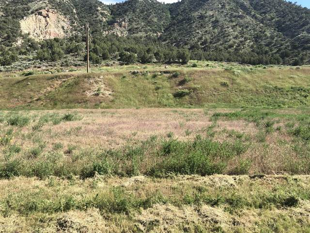 525 Last Chance Drive, Rifle, CO 81650 (MLS #165690) :: Western Slope Real Estate
