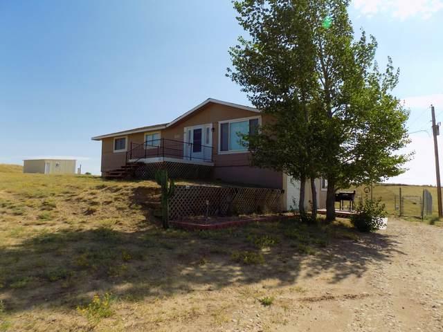 110 Western Avenue, Craig, CO 81625 (MLS #165905) :: Aspen Snowmass | Sotheby's International Realty