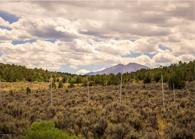 TBD Hidden Valley Drive, Glenwood Springs, CO 81601 (MLS #165949) :: Roaring Fork Valley Homes