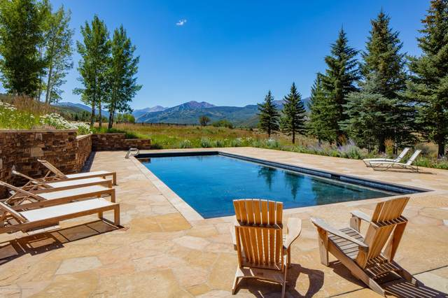 115 Meadowlark Lane, Aspen, CO 81611 (MLS #165959) :: Roaring Fork Valley Homes