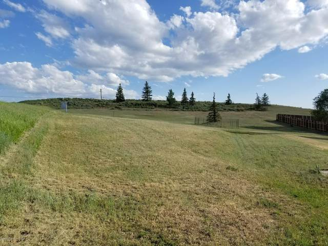 Tbd Stock Drive, Craig, CO 81625 (MLS #166030) :: McKinley Real Estate Sales, Inc.