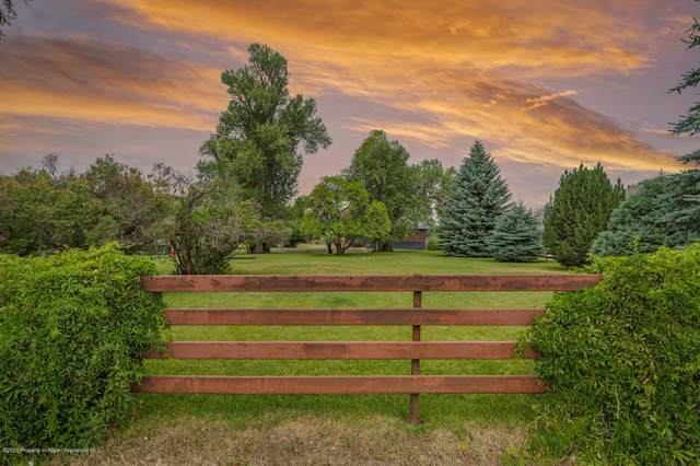 271 Willits Lane, Basalt, CO 81621 (MLS #166159) :: Western Slope Real Estate