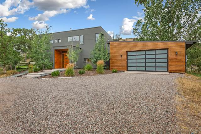111 W Sopris Creek Road, Basalt, CO 81621 (MLS #166341) :: McKinley Real Estate Sales, Inc.