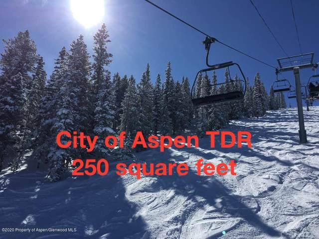 TDR City Of Aspen, Aspen, CO 81611 (MLS #166660) :: Roaring Fork Valley Homes