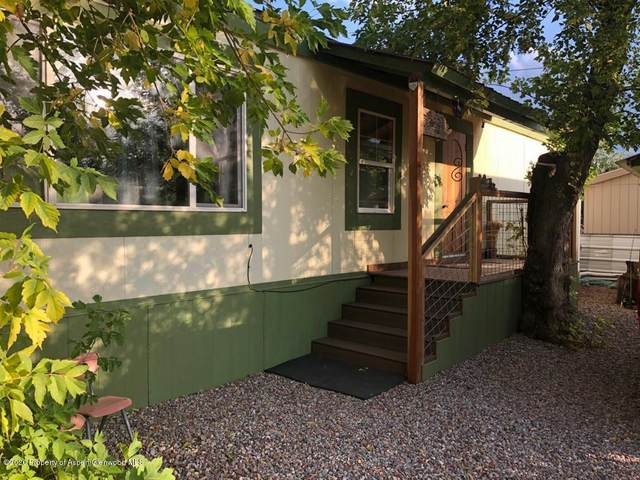 171 Highway 133 Space A13, Carbondale, CO 81623 (MLS #166732) :: McKinley Real Estate Sales, Inc.