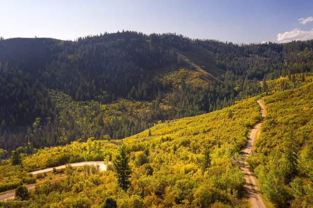 TBD County Road 127, Glenwood Springs, CO 81601 (MLS #166733) :: Aspen Snowmass | Sotheby's International Realty