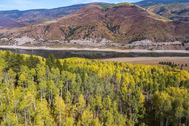 TBD S South Shores Drive Lot #8, Meredith, CO 81642 (MLS #166815) :: Roaring Fork Valley Homes
