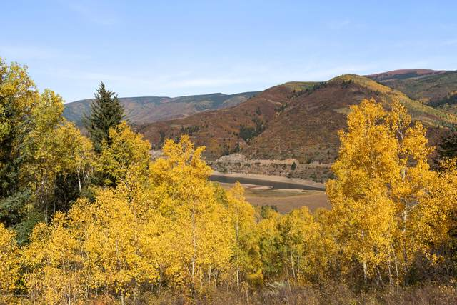 TBD S South Shores Drive Lot #14, Meredith, CO 81642 (MLS #166816) :: Roaring Fork Valley Homes