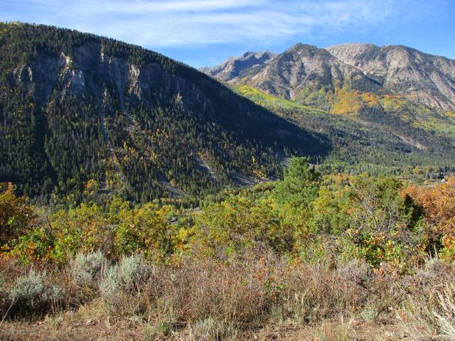 TBD Serpentine Trail, Marble, CO 81623 (MLS #166873) :: Roaring Fork Valley Homes