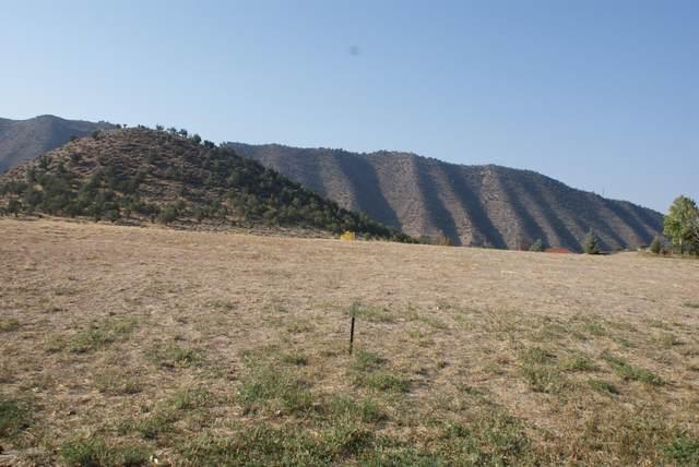 0 Blackhawk Drive, New Castle, CO 81647 (MLS #166968) :: Roaring Fork Valley Homes
