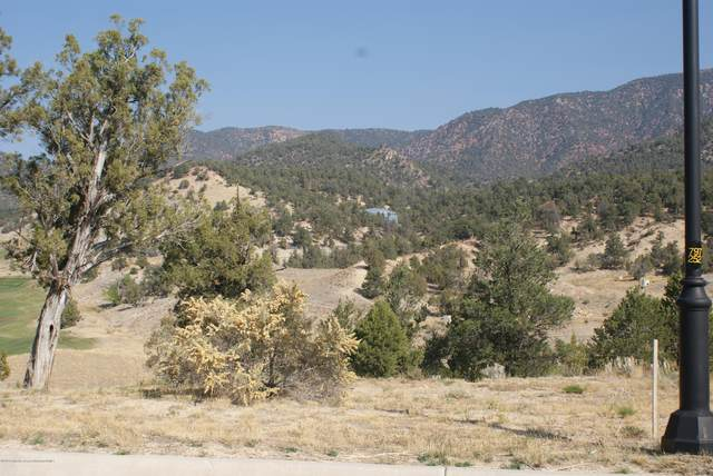 30 Stag Court, New Castle, CO 81647 (MLS #166969) :: Western Slope Real Estate